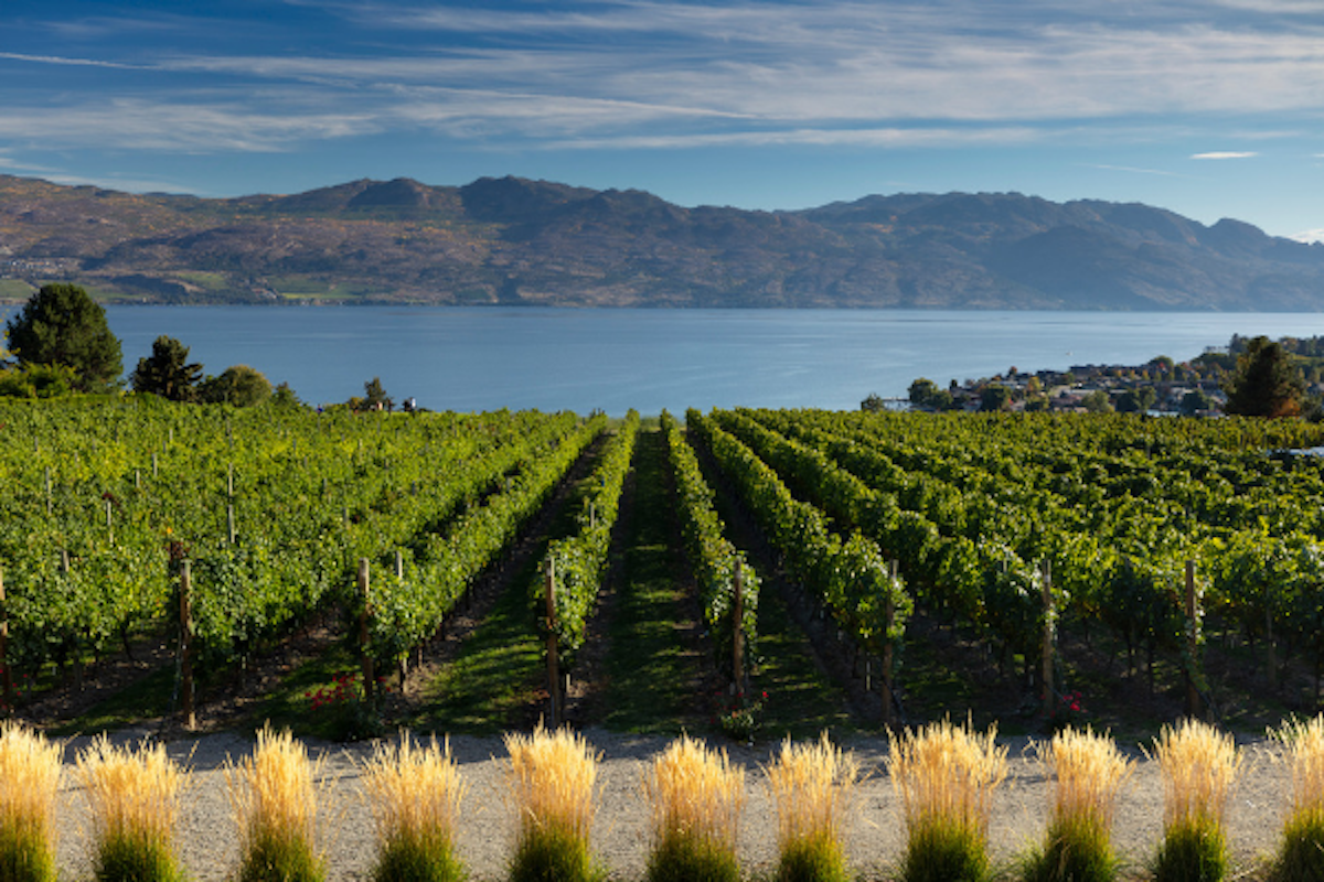 Quails' Gate Family Estate Winery July News & Events