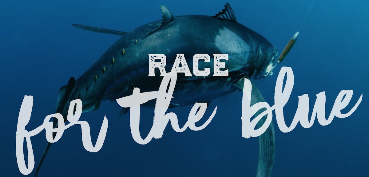Race for the Blue early bird registration before July 15