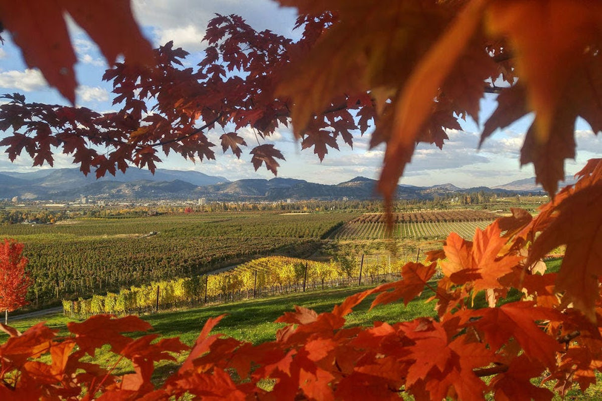 Okanagan Valley A Winner In USA TODAY's 10Best Readers' Choice Awards
