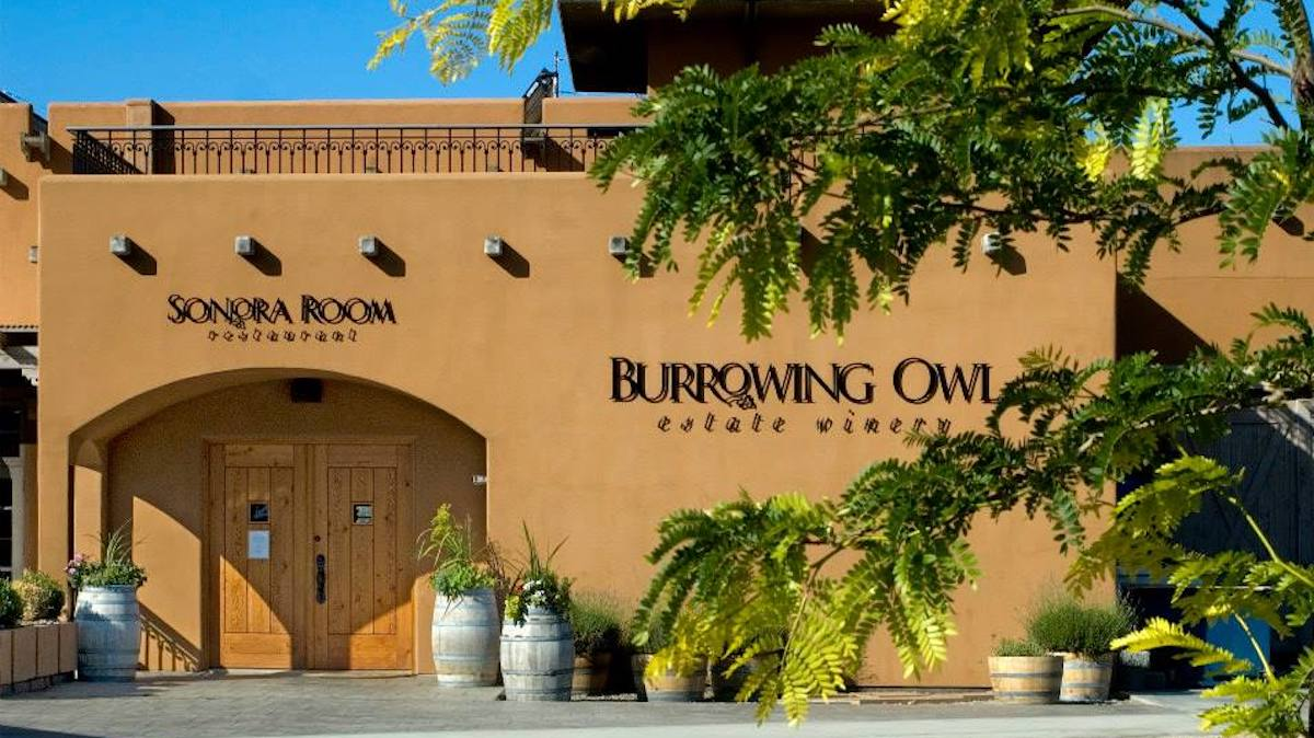 Curating Your Own Tasting Menu at the Sonora Room Restaurant at Burrowing Owl