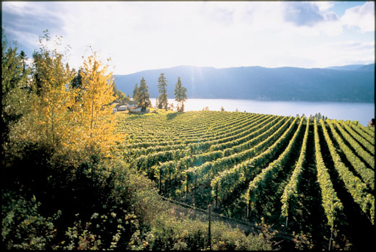 #FavouriteThings – Autumn Wine Touring & Tasting in BC Wine Country – Part 4